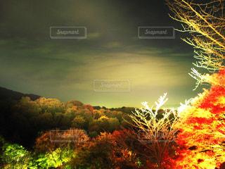 清水寺のライトアップの写真・画像素材[2282084]