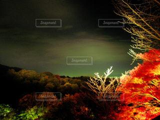 清水寺の山のライトアップの写真・画像素材[2284007]