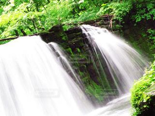 森の滝の写真・画像素材[2284603]
