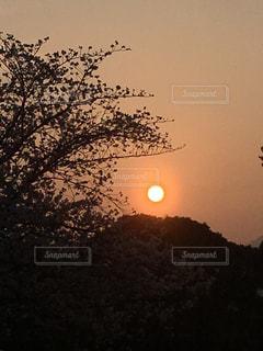 熊本城からの夕暮れの写真・画像素材[1960541]