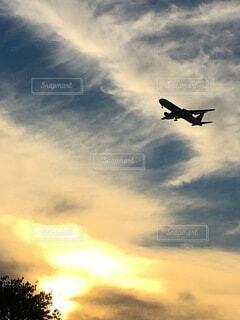 曇った青空を飛ぶ大型旅客機の写真・画像素材[4658671]