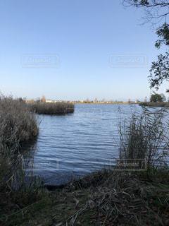 早朝 内湖にての写真・画像素材[1989586]