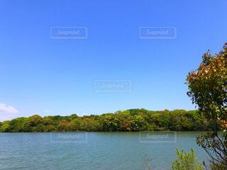 池のそばの写真・画像素材[2082150]