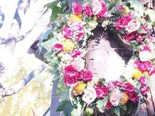 花の写真・画像素材[79583]