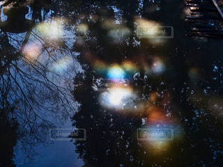 ヒカリモ 虹色の輝きの写真・画像素材[1970902]