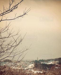 冬の景色の写真・画像素材[3381788]
