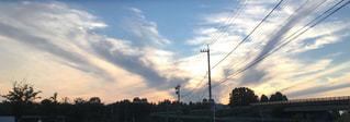夕焼けの前の信号の写真・画像素材[2279600]