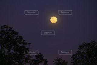 満月の夜の写真・画像素材[2042792]