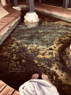 温泉の写真・画像素材[1976619]