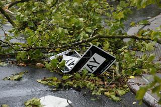 自然災害の写真・画像素材[2165805]