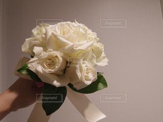 花の写真・画像素材[2010738]