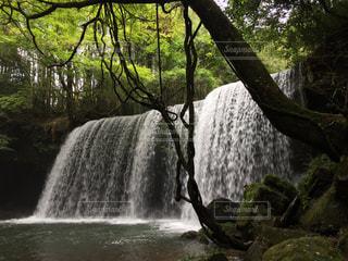 熊本の滝の写真・画像素材[2180318]