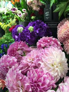 カラフルなお花屋さんの写真・画像素材[2050508]