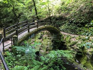天岩戸へと続く橋の写真・画像素材[2224493]