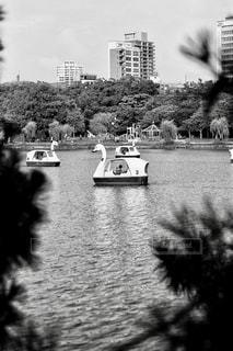 水の体の小さなボートの写真・画像素材[764055]