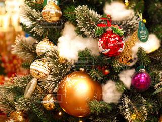 クリスマスツリーの写真・画像素材[4817034]