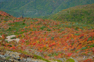 茶臼岳の写真・画像素材[1995090]