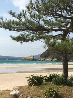 日本で1番美しくビーチの写真・画像素材[1980534]