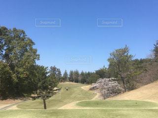 春の青空とゴルフ場と桜の写真・画像素材[2023603]