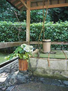 庭のベンチの写真・画像素材[2875336]