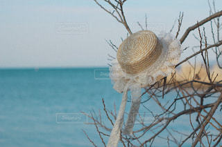 湖と麦わら帽子の写真・画像素材[2000418]
