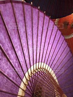 和傘の写真・画像素材[2605473]