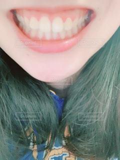 歯の写真・画像素材[2033583]
