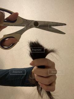 髪の毛の写真・画像素材[2846021]