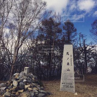 鷹ノ巣山頂上の写真・画像素材[2006596]