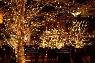 クリスマスイルミネーションの写真・画像素材[2013326]
