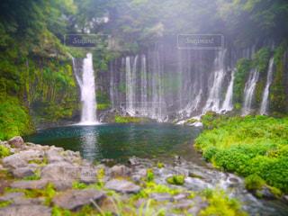 白糸の滝の写真・画像素材[2026661]