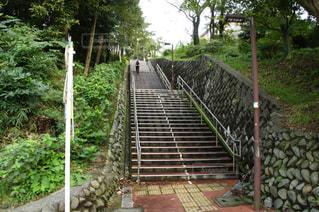 階段の写真・画像素材[2033889]
