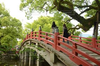 橋を渡るの写真・画像素材[2117164]