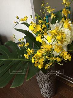 Flowersの写真・画像素材[2051331]
