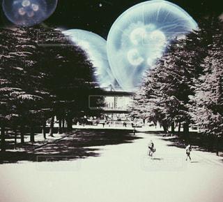 公園の写真・画像素材[2018298]
