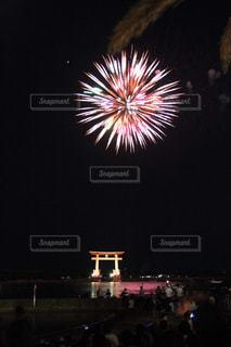 弁天島花火の写真・画像素材[2008768]