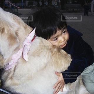 犬に抱きつく子供の写真・画像素材[2223961]