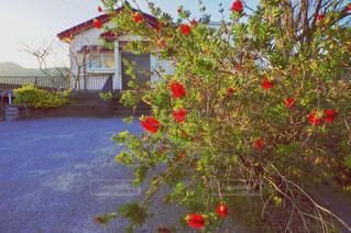 田舎の美しい景色の写真・画像素材[3114432]