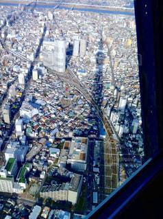 東京の街並みとスカイツリーの影の写真・画像素材[3215607]