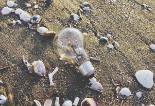 海岸・浜辺・漂着物・電球の写真・画像素材[3222820]