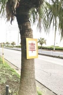 道路脇の標識〜駐車禁止の写真・画像素材[3354142]