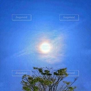 おぼろ月夜の風景の写真・画像素材[4291755]