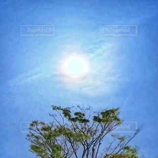 おぼろ月夜の風景の写真・画像素材[4291756]