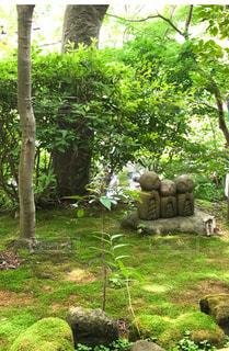 お地蔵様の写真・画像素材[2013241]