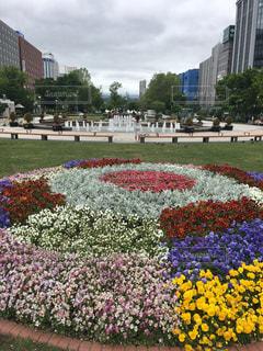 札幌大通り公園にての写真・画像素材[2016460]