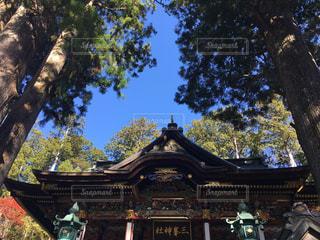 三峰神社 パワースポットの写真・画像素材[2016573]