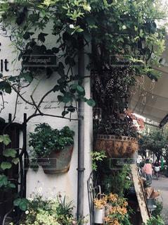街角の花屋さんの写真・画像素材[2086965]