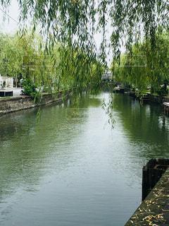 木々に囲まれた水域の小さなボートの写真・画像素材[2317052]