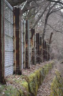 秋の写真・画像素材[2013231]