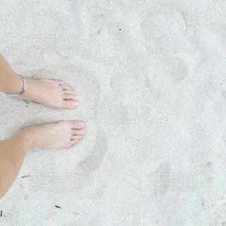 夏の写真・画像素材[2013662]